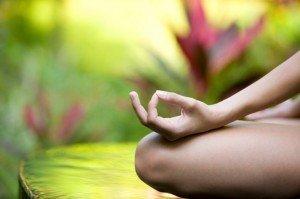 yoga-garden-e1476098005861