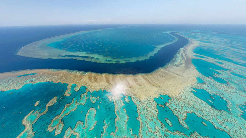 Corals In Great Barrier Reef At The Brink Of Extinction